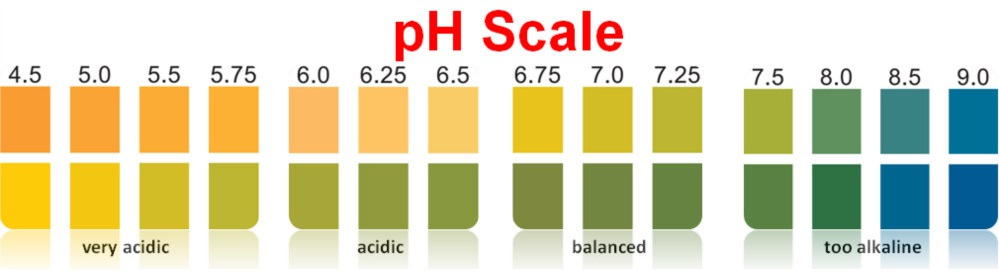 Indicator pH test strips