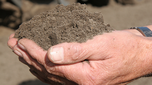 Importance of soil structure in crop production